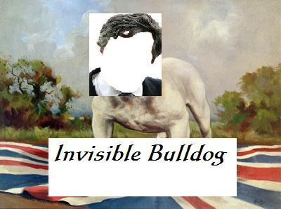 invisiblegb_bulldogonflagbrown1